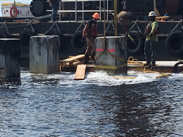 Boater alert, pile trimming underway